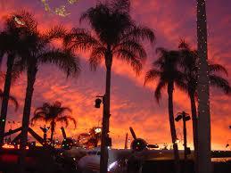 palm trees sunset tumblr. Airplanes Palm Trees Sunset Tumblr