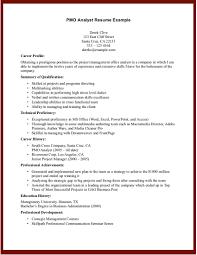 analyst - It Business Analyst Job Description Sample