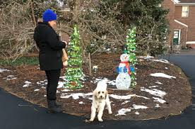 a resident and her dog strolling through clark botanic garden at last year s winter wonderland event