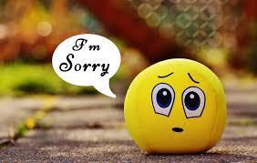 sorry video greetings