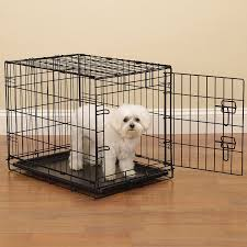 amazoncom  proselect easy dog crates for dogs and pets  black