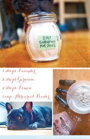 dry dog shampoo homemade recipe