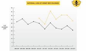 Us Beekeepers Lost 33 Percent Of Bees In 2016 17