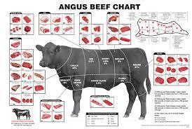 Beef Identification Chart Livestock Skillathon Beef Retail Meat Cuts Identification