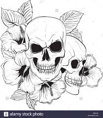 Tattoo anatomy <b>vintage floral skull</b> illustration. <b>Floral skeleton</b>. Vector ...