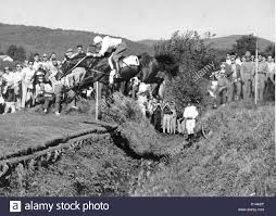 olympic games rome david lurie usa riding sea tiger over an  olympic games rome1960 david lurie usa riding sea tiger over an open ditch