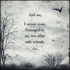 Quotes On Solitude 100 best Solitude images on Pinterest Infj Introvert and A quotes 18