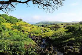 top 10 places near pune backpackers