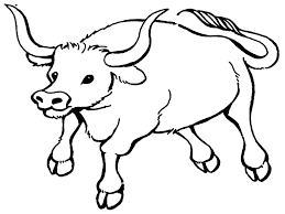 Small Picture Bull Coloring Pages Printable Realistic Bebo Pandco