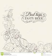 Hops For Decoration Decorative Hops Cover Royalty Free Stock Images Image 34846779