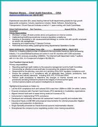 Auditing Resumes Well Designed Medical Auditor Resume Sample For Your Success