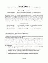 Executive Resume Writing Amazing 5811 Example Executive Or Ceo Careerperfect Throughout Executive Resume