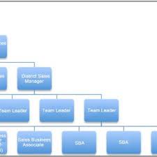 Direct Marketing Organizational Chart Example From Bihar