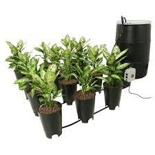 cannabis grow box