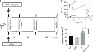 paragon defrost clock wire diagram delighted paragon wiring diagram paragon