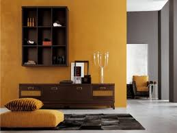 Orange Small Living Room Colors