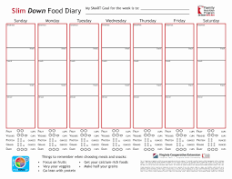 T Chart Template Unique Food Journal Chart Ive Ceptiv | Loan Emu
