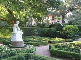 houston s 5 best public gardens