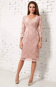 Anya Lace Occasion Dress Blush Wedding Dresses Evening Wear