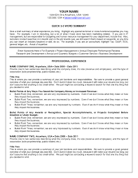 Recruitersume Summary Insssrenterprisesco Examples Medical Example