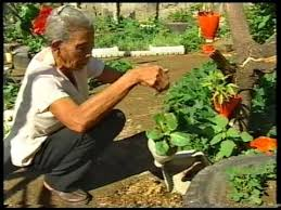 philippines vegetable production in