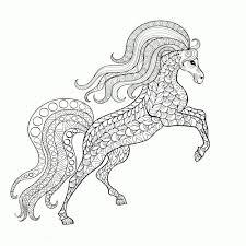Steigerend Paard Tekenen Makkelijk Dejachthoorn