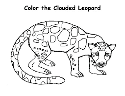 Baby Leopard Coloring Pictures Colouring Pages Page Snow To Color By