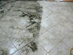 remove dried grout from tiles