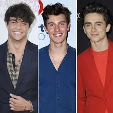 To all the boys i've loved before. A Noah Centineo Shawn Mendes And Timothee Chalamet Hair Off