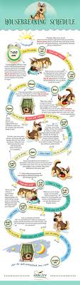 Puppy House Training Chart Potty Training Schedule How To Housebreak A Puppy Infographic