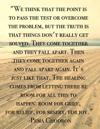 Pema Chodron Quotes Enchanting Pema Chodron Quotes When Things Fall Apart