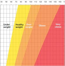 Health Weight Chart Sample Ideal Weight Chart 7 Free Documents Download In Pdf