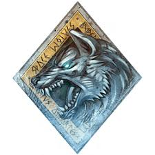 Image result for space wolves