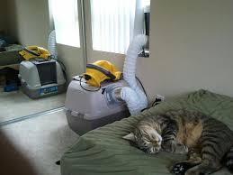 hagen catit hooded cat litter box. Report This Image Hagen Catit Hooded Cat Litter Box
