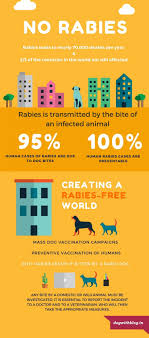 world rabies day prevention and cure ly world rabies day prevention and cure infographic