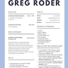 Good Resume Examples 2017 Best Cv Examples 100 To Try Resume Examples 100 with regard to 33
