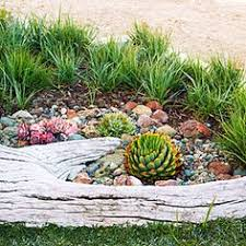 Small Picture Garden Design Garden Design with Succulent Garden Ideas on
