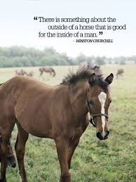 Country Life Quotes And Sayings Stunning Country Quotes About Life So Inspiring