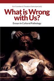 what is wrong us essays in cultural pathology amazon co uk what is wrong us essays in cultural pathology amazon co uk eric coombes theodore dalrymple 9781845409005 books