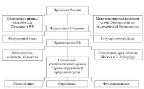 Экологический аудит  системы центральных органов исполнительной власти России гарантии соблюдения прав граждан в области природопользования и охраны окружающей среды