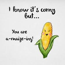 Image result for corn puns