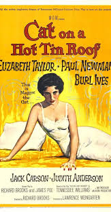cat on a hot tin roof imdb