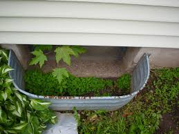 overhead view of a basement window well filled with dirt plants and even a