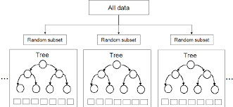 Exploring Random Forest Internal Knowledge And Converting