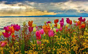 Springtime Images Wallpapers (66+ ...