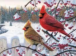 Free Desktop Wallpaper Winter Birds on ...