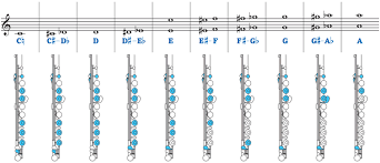 Bass Flute Finger Chart Flute Fingering Chart Toplayalong Com
