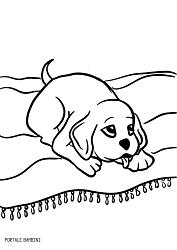 Disegni Di Cani Da Stampare E Colorare Gratis Portale Bambini