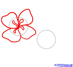 Small Picture How to Draw Easy Flowers Step by Step Flowers Pop Culture FREE