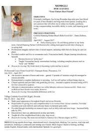 Dog Sitter Resume From Dog Resume Rescue Me Dogs Nj Example For